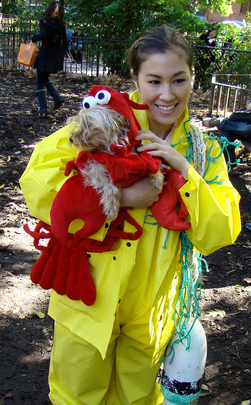 Halloween Owner and Dog Costumes - The Ultimate Couple's Costume Ideas