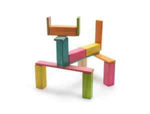 22 Piece Tegu Endeavor Magnetic Wooden Block Set, Tints