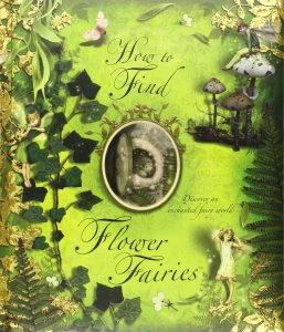 Flower Fairy Books & Activity Books for Kids