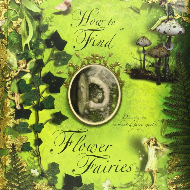 How to find flower fairies and other flower fairy activities for summer.