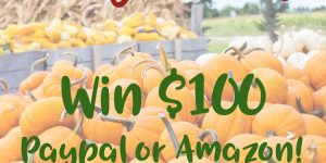 $100 Fall Twitter PayPal Amazon Giveaway