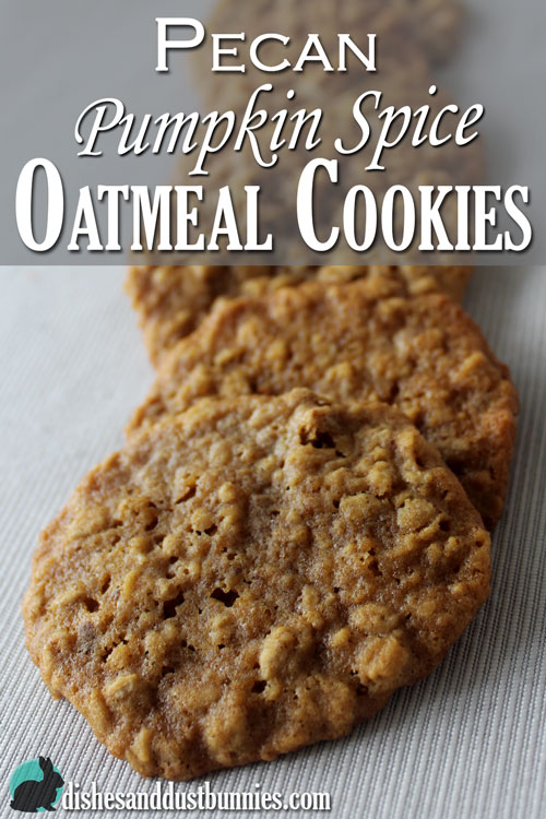 Pecan Pumpkin Spice Oatmeal Cookies from Dishes and Dust Bunnies