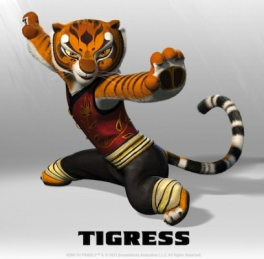 Kung Fu Panda - Tigress Costume