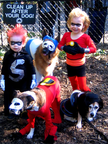 Make a perfect pair with your pooch  sc 1 st  Holly Jolly Holidays & Halloween Owner and Dog Costumes - The Ultimate Coupleu0027s Costume ...